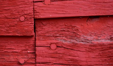 bois rouge de la grange américaine